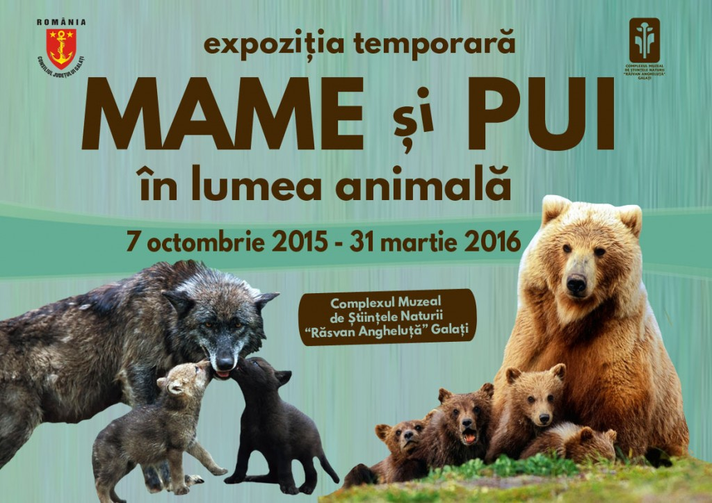 expo mame si pui 2015